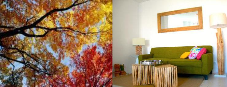 Concepto del proyecto > Invitar la naturaleza a entrar dentro del piso Ana Salomé Branco HogarAccesorios y decoración Madera