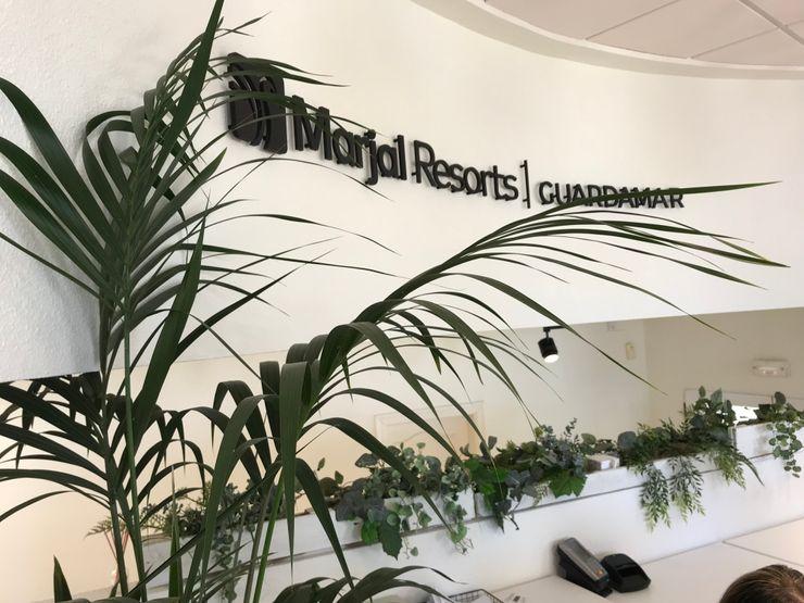 Decoración en recepción A interiorismo by Maria Andes Hoteles de estilo mediterráneo Madera Blanco