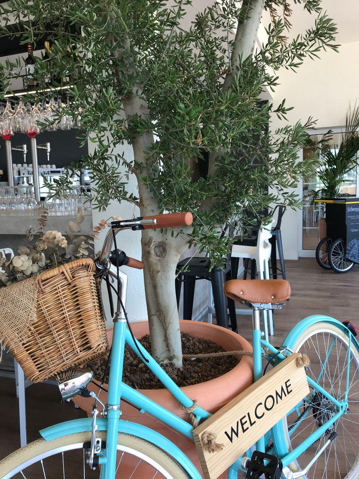 Bicicleta que da la bienvenida A interiorismo by Maria Andes Gastronomía de estilo mediterráneo Compuestos de madera y plástico Turquesa
