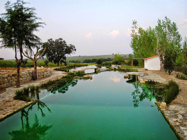 Rialzo Internacional Schwimmteich Beton Grün