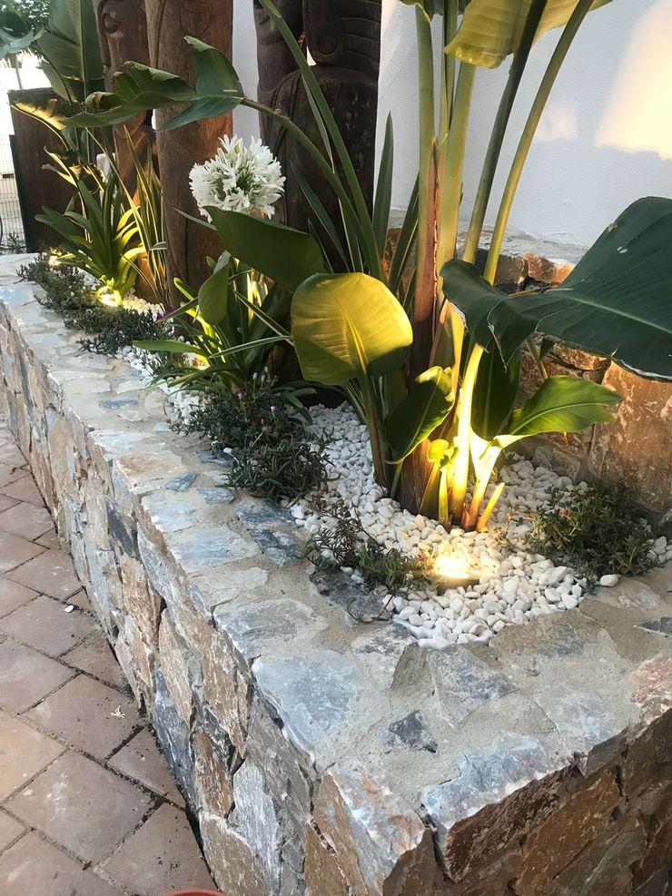 Jardineras tropicales A interiorismo by Maria Andes Bares y clubs de estilo tropical Madera maciza Acabado en madera