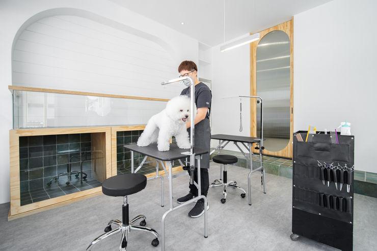 沐遇寵物沙龍 Mu Pet Salon | 寵物等待區 有隅空間規劃所 商業空間 磁磚 White