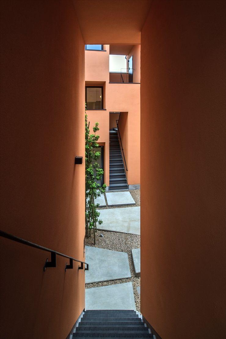 向山建築設計事務所 Stairs