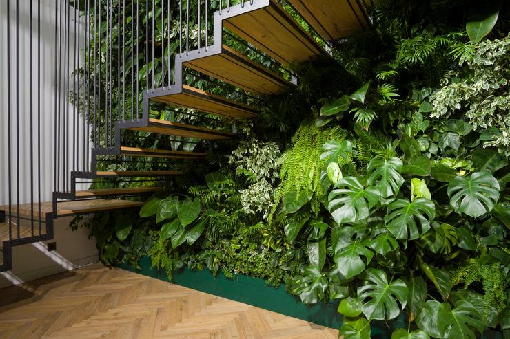Giardino Verticale Interno Sundar Italia - Giardini Verticali Giardino d'inverno moderno