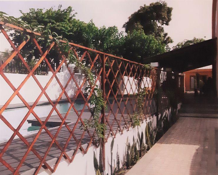 Treliça Clara Guedes - Garden Design Jardins tropicais