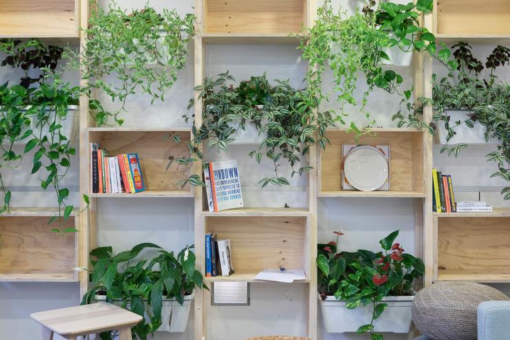 Prototipo ecológico. Pezestudio Oficinas y tiendas de estilo tropical