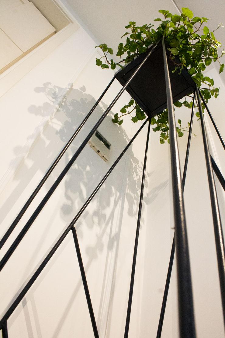 Proyecto PRC Caracas Arq Renny Molina Jardines de estilo moderno