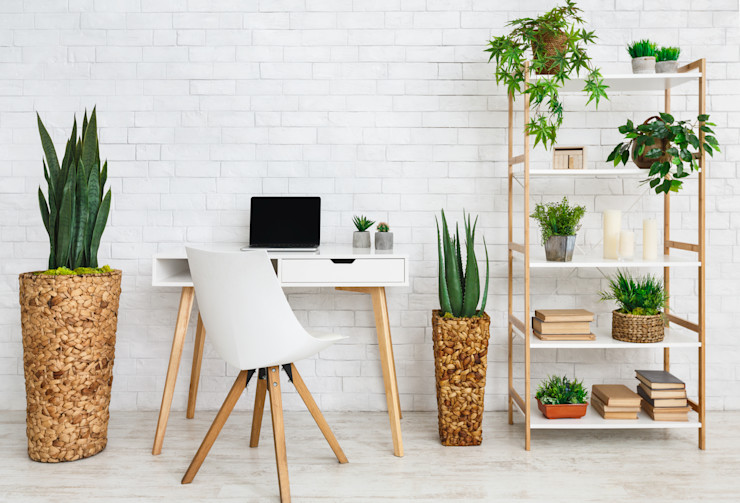 Interioforest Plantscaping Solutions Офіс