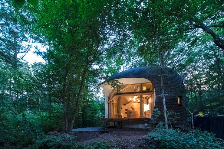 Shell House / The language of forest 遠野未来建築事務所 / Tono Mirai architects 別荘 木 木目調