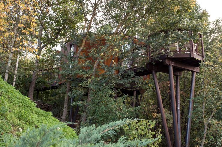Gli Esterni - Osservatorio Astronomico: Nel Parco Con le Stelle Sullalbero Hotel moderni