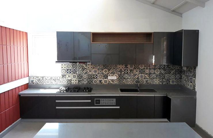 Modern eclectic kitchen DESIGN SPECIES KitchenCabinets & shelves Plywood Grey