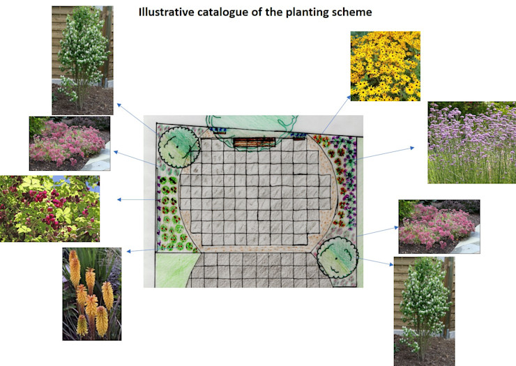 Part of the Planting Plan The Rooted Concept Garden Designs by Deborah Biasoli 에클레틱 정원