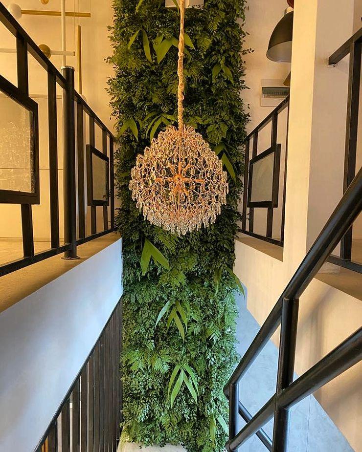 Ambiente Residencial - Escadaria Jardim do Éden Preservados Paisagismo de interior