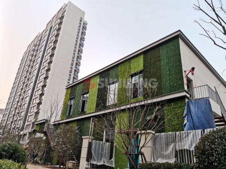 Sunwing Outdoor Artificial Hedge Wall Sunwing Industries Ltd Asiatische Ladenflächen Plastik Grün