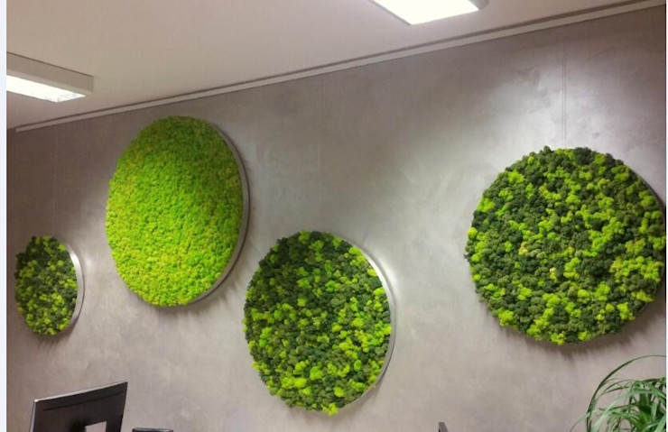 Indoor Wall Art Framed Moss Sunwing Industries Ltd Country style offices & stores Green