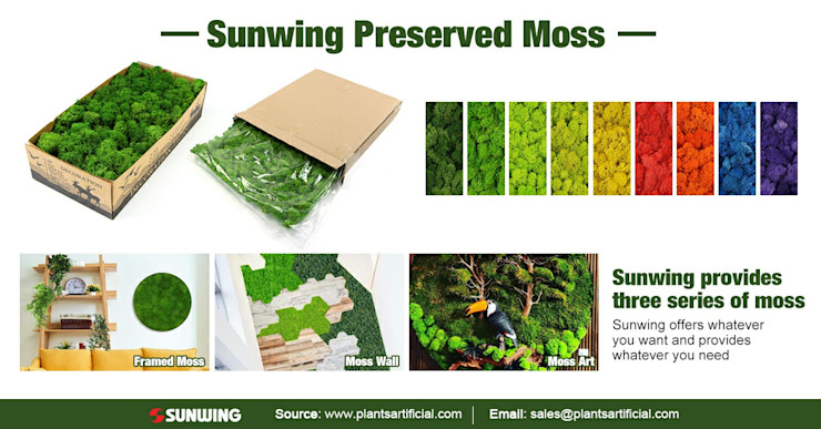 Sunwing Preserved Moss Collection Sunwing Industries Ltd Country style offices & stores Multicolored