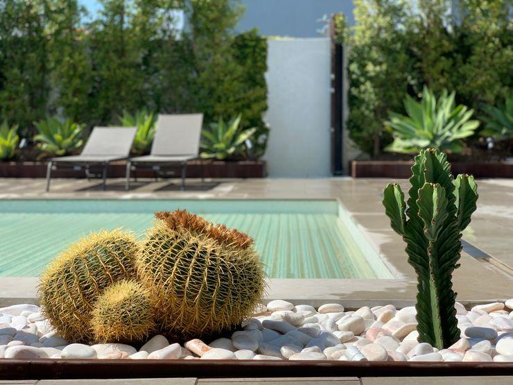 Jardim de baixa manutenção RPV Arquitectura Paisagista Piscinas de jardim Branco