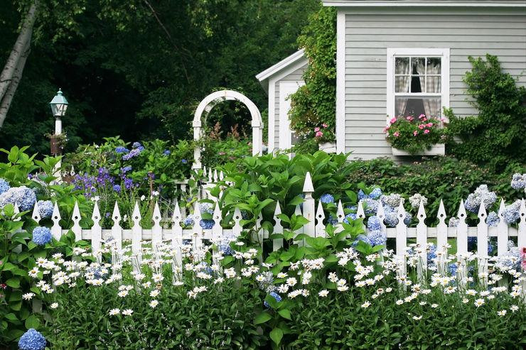 Der Vorgarten ist Ihre Visitenkarte PuroVivo Vorgarten