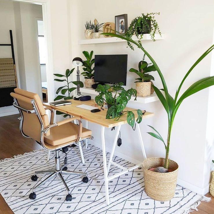 Home office com plantas Bioma Plants EscritórioAcessórios e decoração