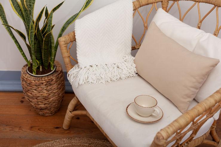 A importância das plantas na decoração da sua casa Jo Decor Paisagismo de interior