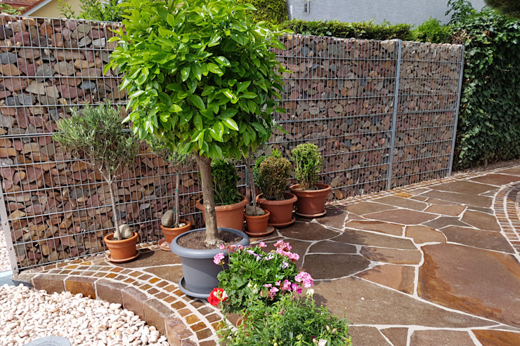 Pflanzgefäße vor einer Gabionen Sichtschutzwand PuroVivo Moderner Garten
