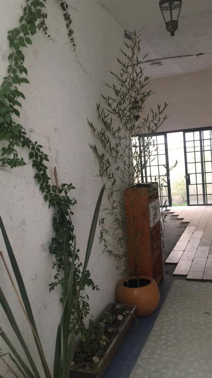 Quick BEE Modern corridor, hallway & stairs