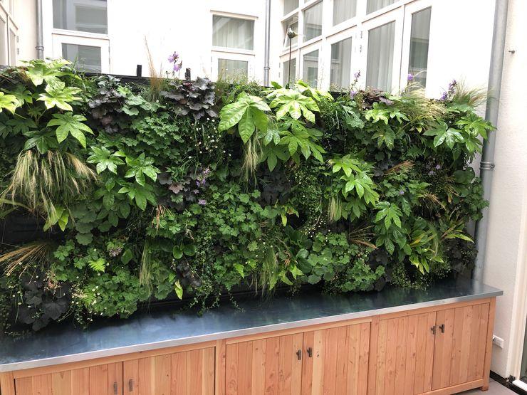 buitenkeuken zinken blad en plantenwand Orangerie Bijleveld Balkon