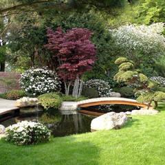 Koiteich in Marburg: moderner Garten von Kirchner Garten + Teich GmbH