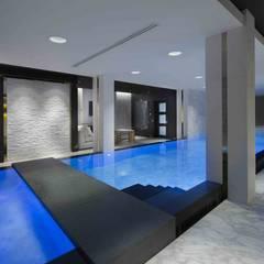 Basement Pool & Spa: modern Pool by Wilkinson Beven Design