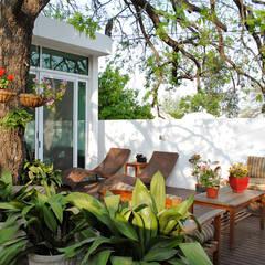 Terrazas  de estilo translation missing: cl.style.terrazas-.tropical por CORTéS Arquitectos