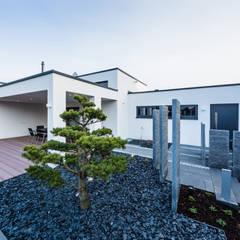 Kaskadenhaus - Einfamilienwohnhaus in Bürstadt: moderner Garten von Helwig Haus und Raum Planungs GmbH
