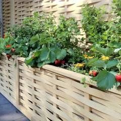 Jardins minimalistas por Quercus UK Ltd