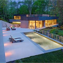 Weston Residence: modern Pool by Specht Architects