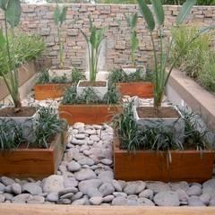 Jardines de estilo asiático por BAIRES GREEN MUEBLES