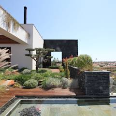 Casa Madeira . 2011-2013: Jardins modernos por Riscos & Atitudes, Lda