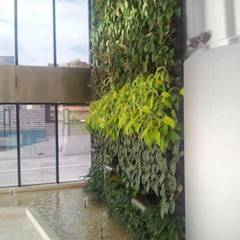 Jardín vertical: Jardines de estilo moderno por La Fabrica, arquitectos y Asociados C.A.