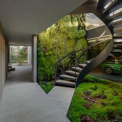 The Wall House: Corredores, halls e escadas minimalistas por guedes cruz arquitectos
