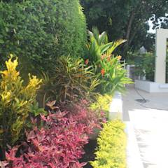 Jardinera perimetral lindero piscina.: Jardines de estilo minimalista por Camilo Pulido Arquitectos