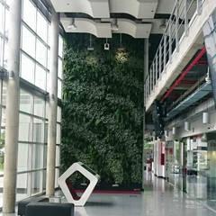 JARDINES VERTICALES: Jardines de estilo moderno por Kubik Lab
