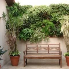 Jardines de estilo topical por Greice Peralta