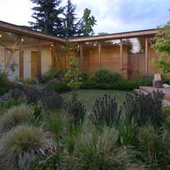 Biological Medical Center Global: Jardines de estilo moderno por Vientos Arquitectura