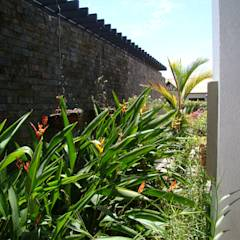 Casa Caracoli: Jardines de estilo mediterráneo por David Macias - Arquitectura & Urbanismo
