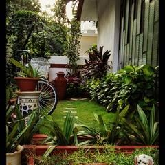 Mr.M's garden: rustic Garden by Designink Architecture and Interiors