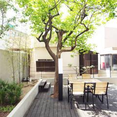 공사후 외관: 로하디자인의 translation missing: kr.style.정원.minimalist 정원