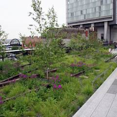 High Line - Varios Autores: Pasillos, hall y escaleras de estilo translation missing: cl.style.pasillos-hall-y-escaleras.industrial por Gabriela Ulloa W.