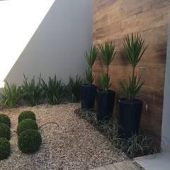 Jardines de estilo topical por Eneida Lima Paisagismo