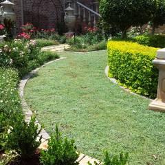 Capital Park: modern Garden by Gorgeous Gardens