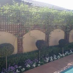 TRELLIS SCREEN WITH ARCHES: modern Garden by Oxford Trellis