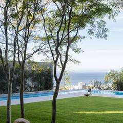 Avenue Fresnaye Villa: modern Garden by Jenny Mills Architects