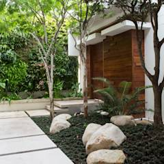 The Entrance Courtyard: modern Garden by Jenny Mills Architects